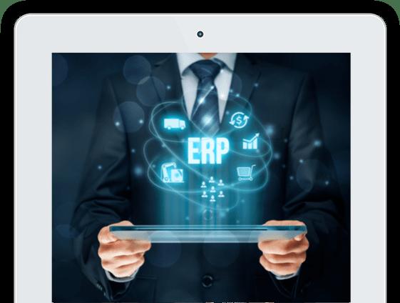 ERP rendszer - független tanácsadás - Macrosoft